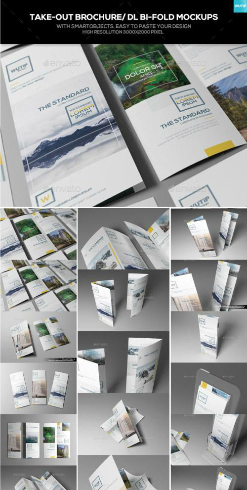 Take-out Brochure/ DL Bi-Fold Mockups 16535076