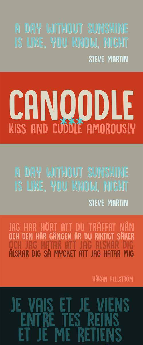 Canoodle Font Family - 2 Fonts