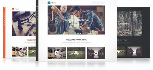 YooTheme - Peak v1.0.7 - WordPress Theme