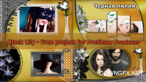 Black Lily - project for ProShow Producer