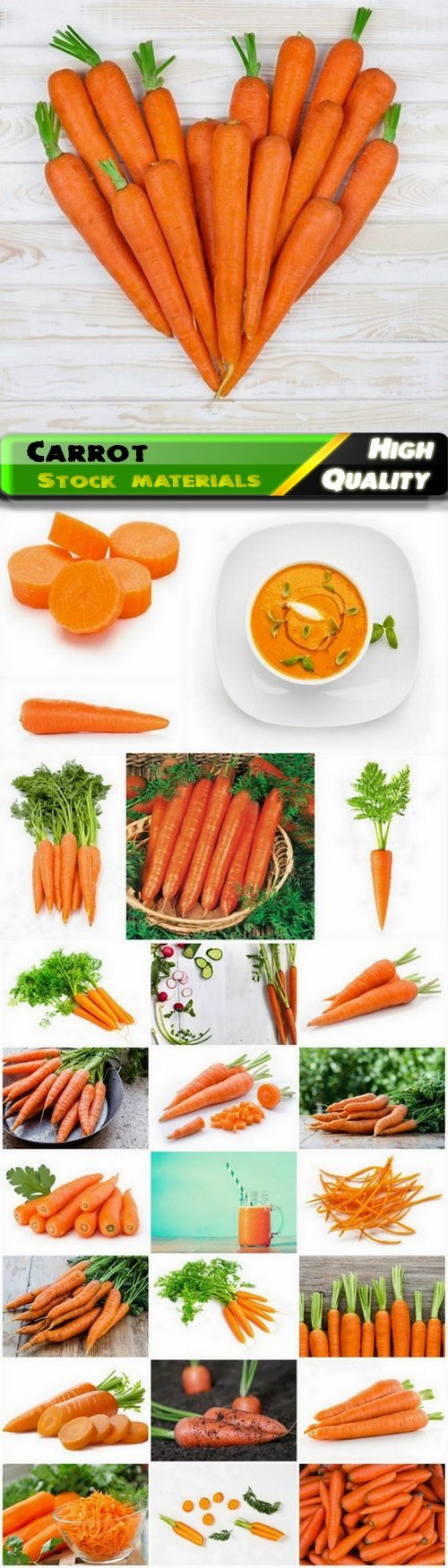 Carrot is genus of plants of the Umbilical family 25 HQ Jpg