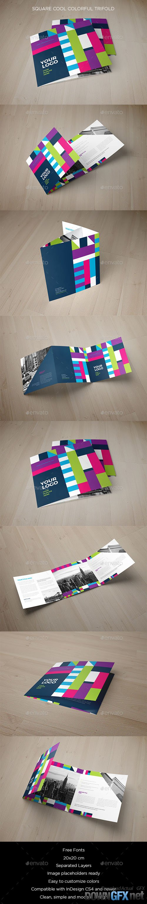 Square Cool Colorful Trifold 19747585