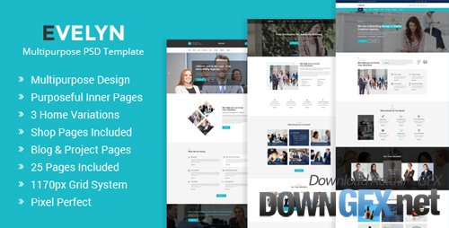ThemeForest - Evelyn | Multipurpose Business and Agency PSD Template 20003757