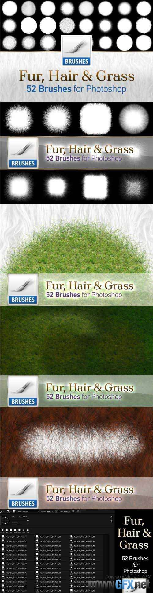 Fur, Hair and Grass Brushes 1558188