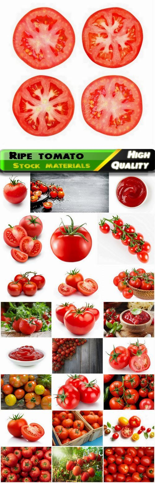 Vegetable tomato a kind of the genus Paslen 25 HQ Jpg