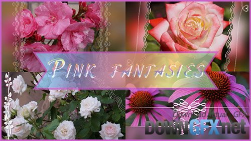 Pink fantasies - project ProShow Producer