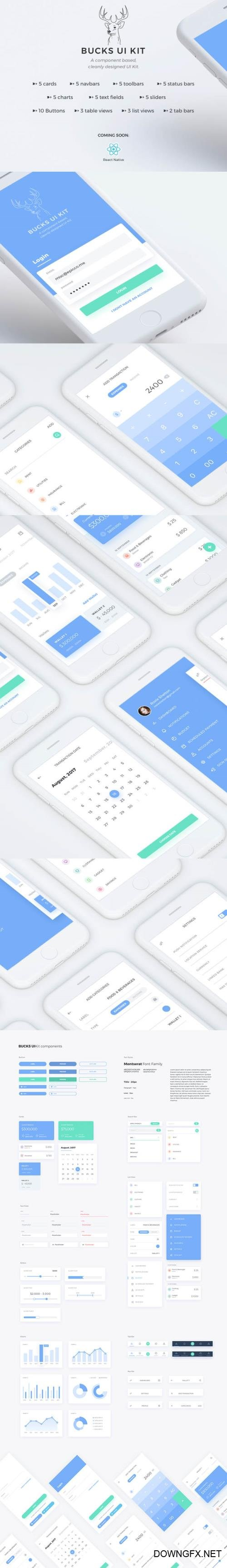 Bucks UI Kit - Finance inspired iOS mobile UI Kit compatible with Sketch