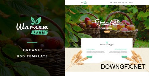 ThemeForest - Warsaw v1.0 - Organic Fruits & Vegetables PSD Template - 18027829