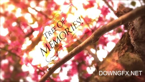 MA - Tree of Memories 109817