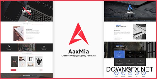 ThemeForest - AaxMia v1.0 - One page Creative Agency and Portfolio Template - 20353082