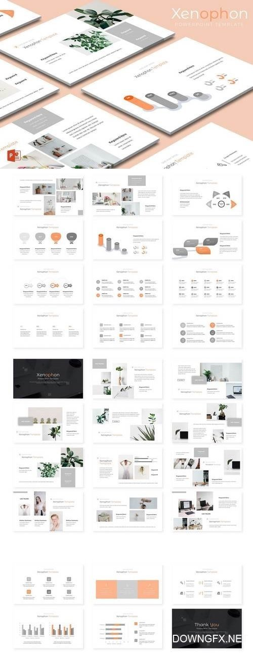 Xenophon - Powerpoint, Keynote, Google Sliders Templates