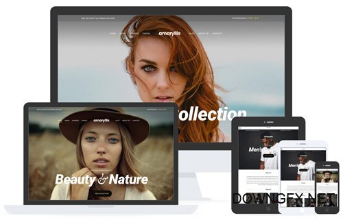 CSSIgniter - Amaryllis v2.0.1 - WordPress Theme