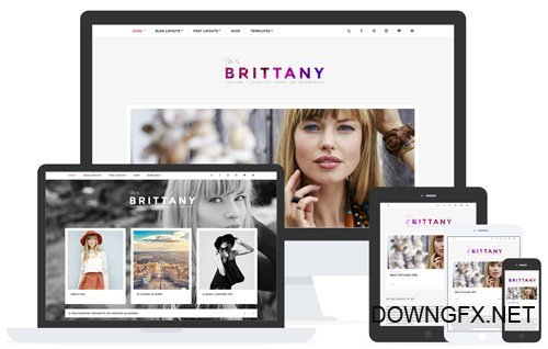 CSSIgniter - Brittany v1.7.1 - WordPress Theme
