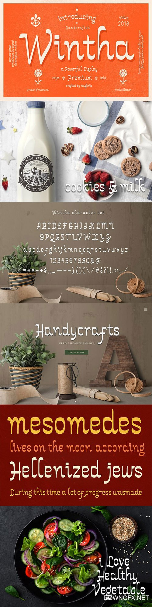 Wintha Typeface 3274402