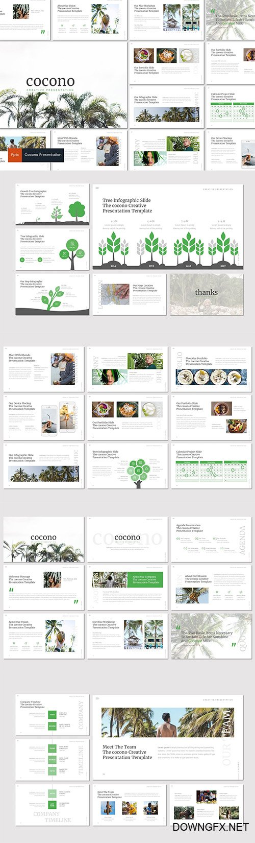 Cocono - Creative Powerpoint Keynote and Google Slides Templates