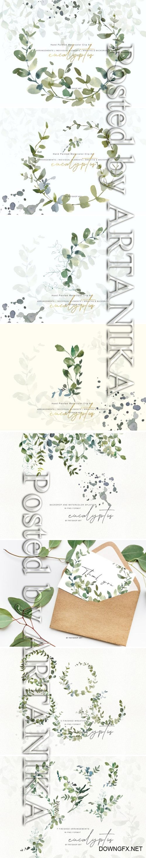 Watercolor Eucalyptus Clipart Collection 1505797