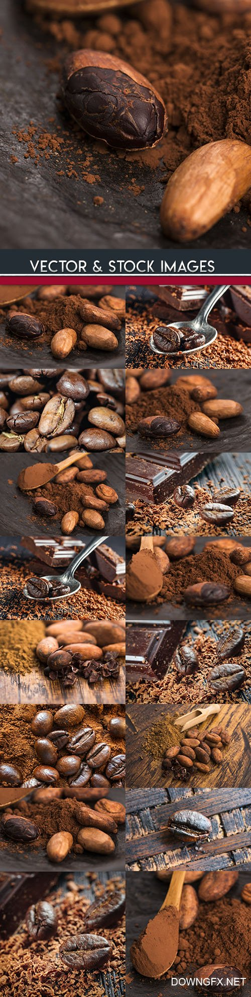 Cocoa beans and flavored roasted coffee grains
