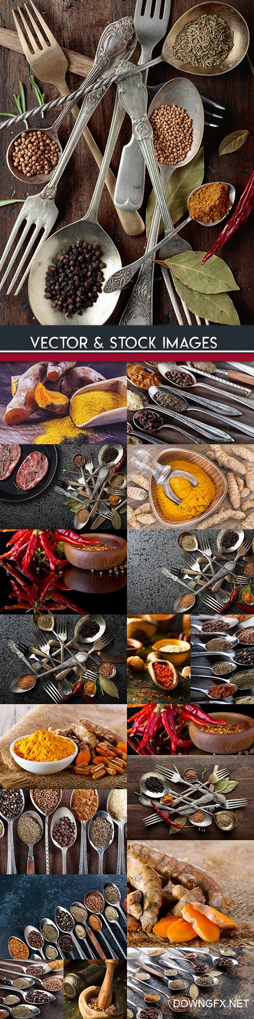 Fragrant spices and seasonings for sharp dishes