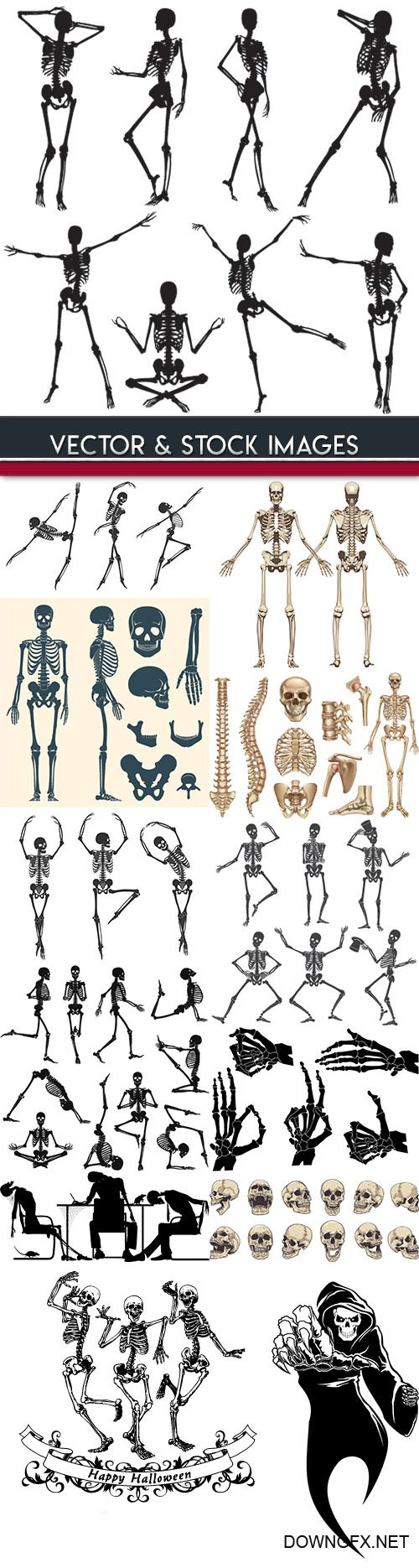 Human skeleton and bones in Halloween dance