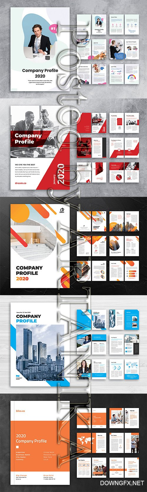 5 Company Profile Templates