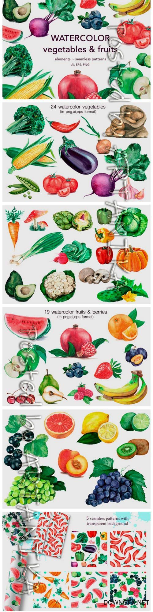 Watercolor Vegetables & Fruits 2151243
