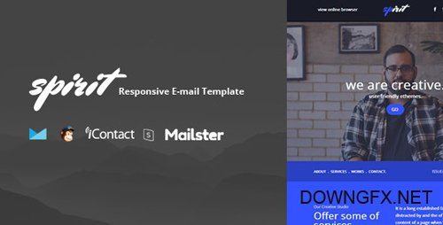 ThemeForest - Spaice Mail v1.0 - Online Access + Mailster + MailChimp - 25765797