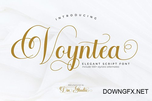 Voyntea-Beautiful Calligraphy Font