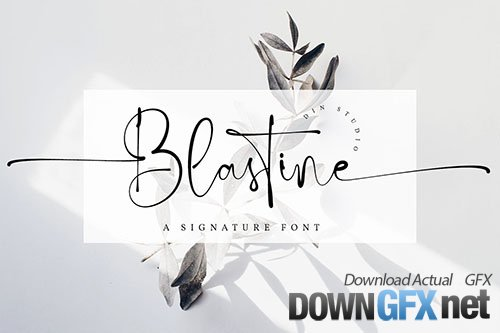 Blastine-Beautiful Signature Font