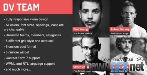 ThemeForest - DV Team v2.0 - Responsive Team Showcase WordPress Plugin - 9962337